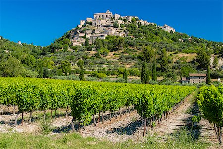france - Vineyards with village of Gordes in the background, Vaucluse, Provence, France Stock Photo - Rights-Managed, Code: 862-08273095
