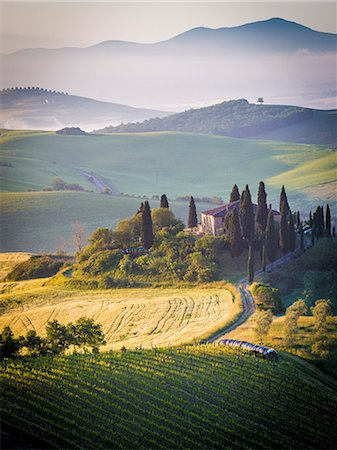Val d'Orcia, Tuscany, Italy. A lonely farmhouse with cypress and olive trees, rolling hills. Stock Photo - Rights-Managed, Code: 862-08273443