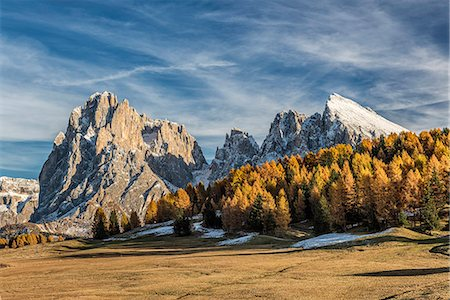 Alpe di Siusi/Seiser Alm, Dolomites, South Tyrol, Italy. Autumn colors on the Alpe di Siusi/Seiser Alm with the Sassolungo/Langkofel and the Sassopiatto/Plattkofel in background Stock Photo - Rights-Managed, Code: 862-08698871