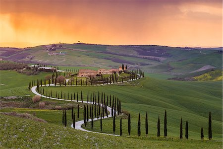 Valdorcia, Siena, Tuscany, Italy. Road of cypresses leading to a farmhouse with a stormy sunset in the background. Stock Photo - Rights-Managed, Code: 862-08699441