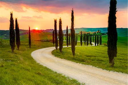 Valdorcia, Siena, Tuscany, Italy. Road of cypresses leading to a farmhouse with a stormy sunset in the background. Stock Photo - Rights-Managed, Code: 862-08699443