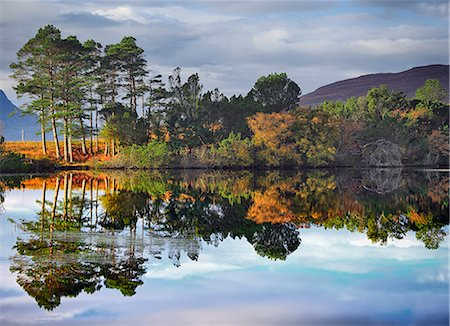 fall trees lake - Scotland, Ullapool. Autumn trees reflected in Loch Cul Dromannan north of Ullapool. Stock Photo - Rights-Managed, Code: 862-08699978