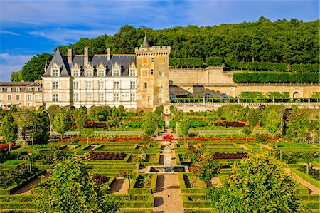 Chateau of Villandry gardens, Indre et Loire, Loire Valley, France, Europe Stock Photo - Rights-Managed, Code: 862-08718833