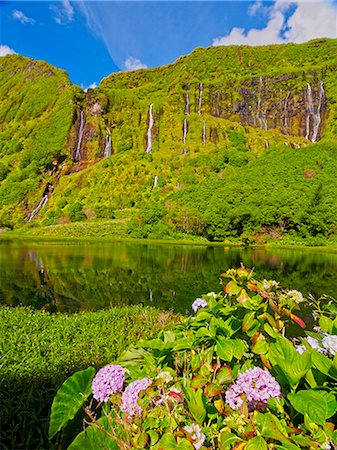 flores - Portugal, Azores, Flores, Fajazinha, Lagoa das Patas and Poco da Alagoinha. Stock Photo - Rights-Managed, Code: 862-08719355