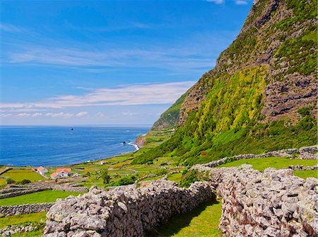 flores - Portugal, Azores, Flores, Faja Grande, View towards Ponta da Faja. Stock Photo - Rights-Managed, Code: 862-08719353