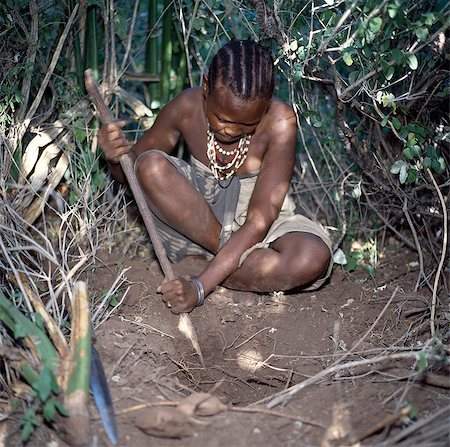A Hadza woman digs for edible tubers with a digging stick.The Hadzabe are a thousand-strong community of hunter-gatherers who have lived in the Lake Eyasi basin for centuries. They are one of only four or five societies in the world that still earn a living primarily from wild resources. Stock Photo - Rights-Managed, Code: 862-03355173