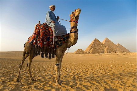 A camel driver stands in front of the pyramids at Giza,Egypt . Stock Photo - Rights-Managed, Code: 862-03352885