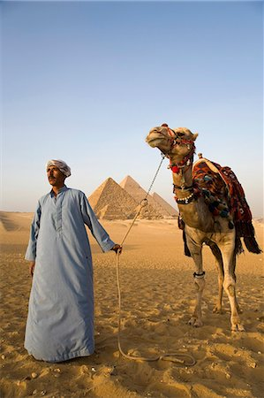 A camel driver stands in front of the pyramids at Giza,Egypt . Stock Photo - Rights-Managed, Code: 862-03352886