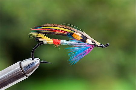 UK. A traditional salmon fishing fly Stock Photo - Rights-Managed, Code: 862-03353759