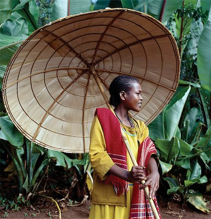 An attractive girl from the Kediyo tribe carries a large,beautifully made umbrella. Its wooden frame is covered with the dried leaves of ensete,the false banana plant (seen growing in the background). Widely cultivated in southern Ethiopia,ensete roots and stems,which are rich in carbohydrates,are either cooked and eaten as a porridge or made into bread. Stock Photo - Rights-Managed, Code: 862-03353992