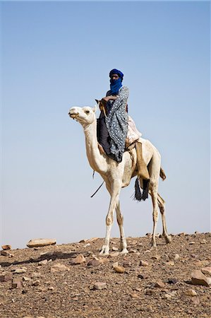 desert people dress photos - Mali,Timbuktu. A proud Tuareg rides his camel across semi-desert stoney terrain near Timbuktu. Stock Photo - Rights-Managed, Code: 862-03364233