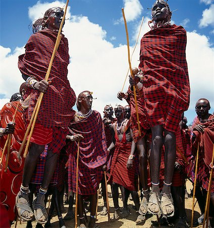 During their dances,Maasai warriors take turns to leap high in the air from a standing position without bending their knees. They achieve this by flexing their ankles in a seemingly effortless way . Stock Photo - Rights-Managed, Code: 862-03366158