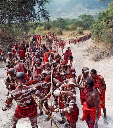 Africa,Kenya,Kajiado District,Ol doinyo Orok. A large gathering of Maasai warriors daub themselves with white clay during an Eunoto ceremony when the warriors become junior elders and thenceforth are permitted to marry. Stock Photo - Rights-Managed, Code: 862-03366853