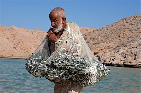 Oman,Muscat Region,Bandar Khayran. A old fisherman fishes for sardines with a traditional net from a beach on the coast near Muscat Stock Photo - Rights-Managed, Code: 862-03360331
