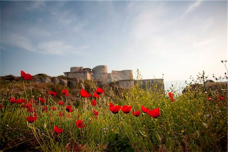 Syria, Crac des Chevaliers. This medieval castle, built by the crusaders, was built to withstand siege for 5 years. Stock Photo - Rights-Managed, Code: 862-03737213
