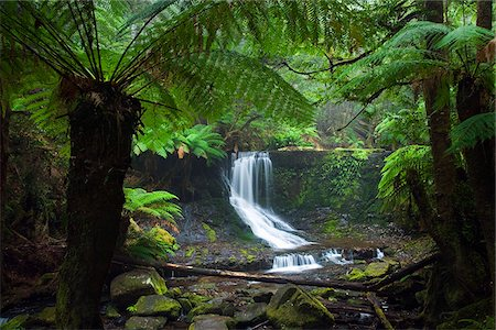 Australia, Tasmania, Mt Field National Park.  Horseshoe Falls. Stock Photo - Rights-Managed, Code: 862-03807282