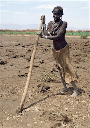 An old Dassanech woman prepares her fields beside the Omo River with a digging stick in readiness to plant sorghum. This crude form of  agricultural implement is in common use in this remote part of Ethiopia. Stock Photo - Rights-Managed, Code: 862-03820348