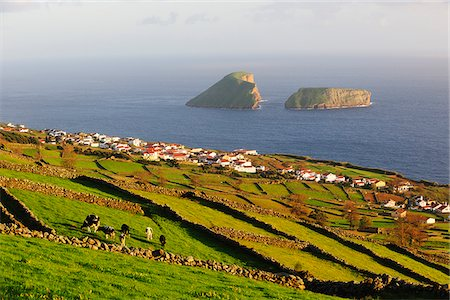 Pasture fields at Ribeirinha.In the background we can see the Ilheus das Cabras (islets). Terceira, Azores islands, Portugal Stock Photo - Rights-Managed, Code: 862-03889144