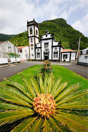 Palm tree and motherchurch at Faial da Terra. Sao Miguel, Azores islands, Portugal Stock Photo - Rights-Managed, Code: 862-03889216