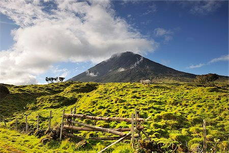 The volcano, 2351 meters high, at the Pico island. His last eruption was in 1720. Azores islands, Portugal Stock Photo - Rights-Managed, Code: 862-03889228