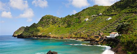 Sao Lourenco Bay with terraced vineyards by the sea. Santa Maria, Azores islands, Portugal Stock Photo - Rights-Managed, Code: 862-03889222