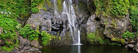 A waterfall at Faja Grande. Poco do Bacalhau. Flores, Azores islands, Portugal Stock Photo - Rights-Managed, Code: 862-03889285