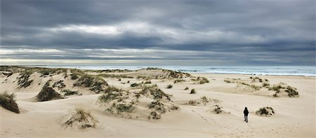 panoramic winter scene - The vast empty beach and sand dunes of Sao Jacinto in Winter, Beira Litoral, Portugal Stock Photo - Rights-Managed, Code: 862-03889348