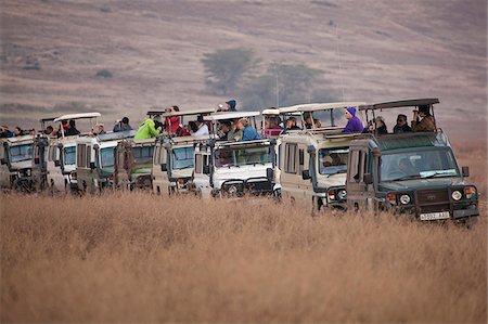 serengeti national park - Safari tourists watching game on the Serengeti in Tanzania Stock Photo - Rights-Managed, Code: 862-03890075