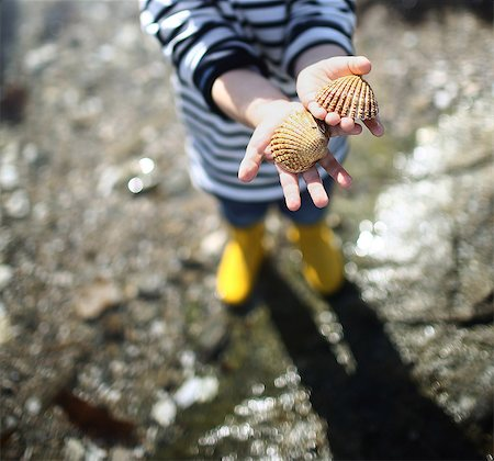 detail - 3 years old boy looking for sea shells on the beach Stock Photo - Rights-Managed, Code: 877-08129107