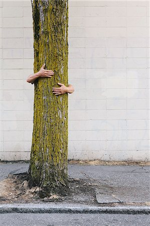 settlement - Man hugging a tree on an urban street and sidewalk. Stock Photo - Rights-Managed, Code: 878-07442524