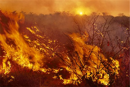 fire - Bushfire, Okavango Delta, Botswana Stock Photo - Rights-Managed, Code: 878-07590884