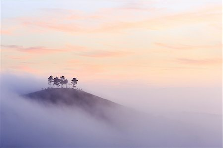 Colmer's Hill in Dorset on a misty autumn morning. Stock Photo - Rights-Managed, Code: 872-08246096
