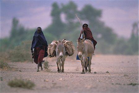 Masai with Donkeys Tanzania Stock Photo - Rights-Managed, Code: 873-06440206