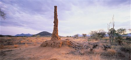 Termite Mound Kenya Stock Photo - Rights-Managed, Code: 873-06440352