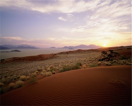 Overview of Landscape at Sunset Naukluft Park, Namibia, Africa Stock Photo - Rights-Managed, Code: 873-06440471