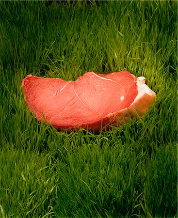 Rump Steak in Grass Stock Photo - Rights-Managed, Code: 873-06440779