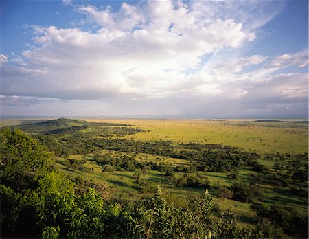 serengeti national park - Landscape in the Serengeti, Tanzania Stock Photo - Rights-Managed, Code: 873-06441233