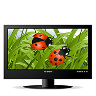 frontal view of widescreen lcd monitor, and natural view for ladybugs on green grass.