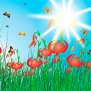 Meadow color background with butterflies. All objects are separated. Vector illustration with transparency. Eps 10.