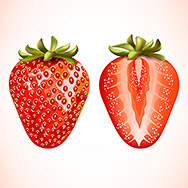 Pieces of fresh strawberry isolated on white background. Vector illustration.