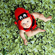 Baby Dressed as Ladybug