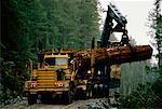 Log Loading British Columbia, Canada