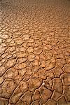 Dry Lake Bottom Bushmanland, South Africa