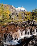 Opabin Plateau, Lake O'Hara Region, Yoho National Park British Columbia, Canada