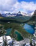 Lake O'Hara Region Yoho National Park British Columbia, Canada