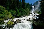 Parc National de Yosemite en Californie, USA