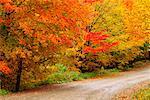 Ketchum Road in Autumn Near Kingston, New Brunswick Canada