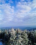 Smoky montagnes grand Smoky Mountains National Park, Tennessee, États-Unis