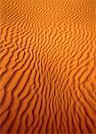 Great Sand Hills Saskatchewan, Canada