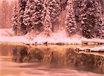 Lac Emerald en hiver le Parc National Yoho en Colombie-Britannique, Canada